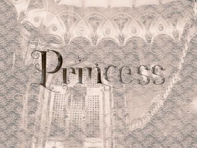 princess orpheum12